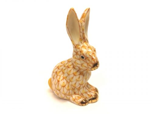 Yellow Miniature Rabbit