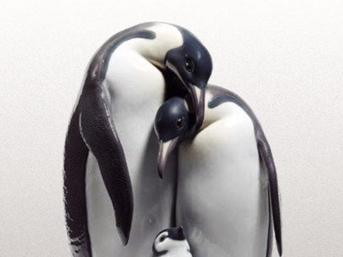 Lladro Penguins