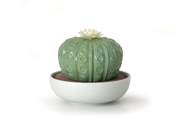 Lladro Porcelain Astrophytum Cactus- Night Approaches 01040191