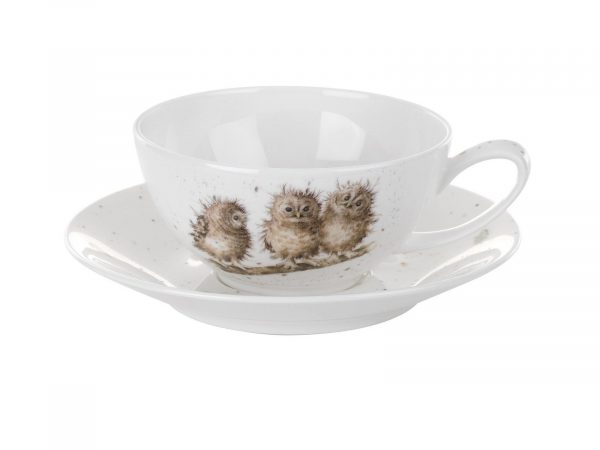 Royal Worcester Wrendale Cup & Saucer - Large / Owls