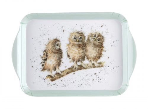 Royal Worcester Wrendale Scatter Tray - Owl