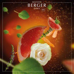 Lampe Berger Exquisite Sparkle Refill