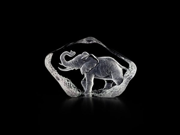 Maleras Wildlife Elephant