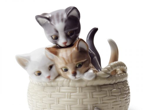 Cats & Kittens Collection