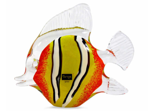Svaja Clown Fish Medium Orange