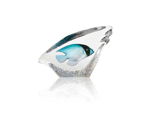 Maleras Crystal Wildlife Coral Fish Turquoise