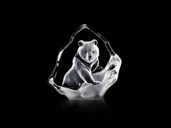 Maleras Crystal grizzly Bear