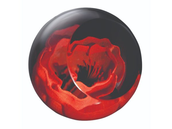 Caithness Glass Poppy Paperweight